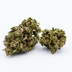 Fleurs de CBD Super Lemon Haze